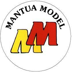 Mantua_Model