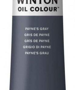 Colore a olio Winsor & Newton Winton grigio payne